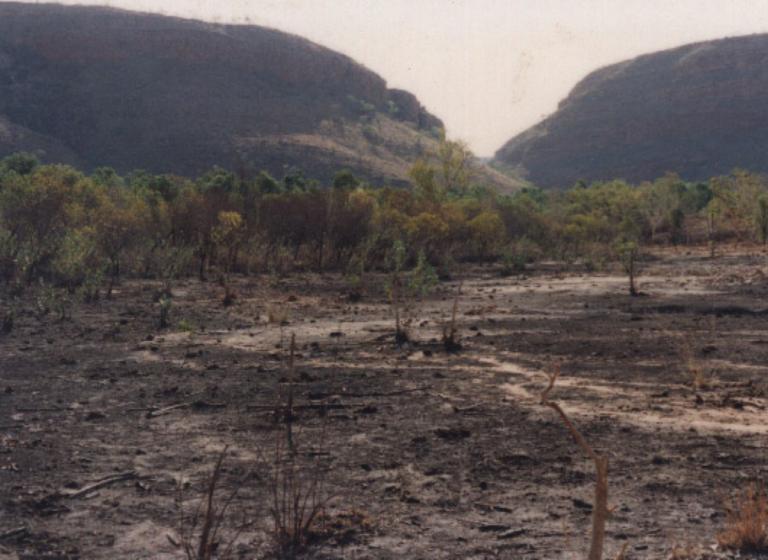 Australia (before)