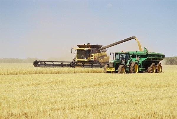 Harvester & chaser bin