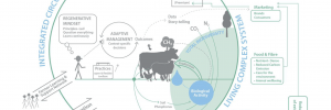Diagram showing an integrated circular system of living systems research in agriculture