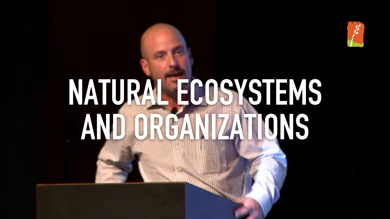 Natural Ecosystems