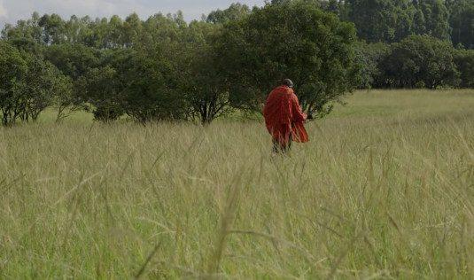 man-wearing-red-in-field